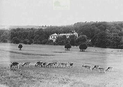 Beamish & District Golf Club, Durham. View of the golf course in the 1930s