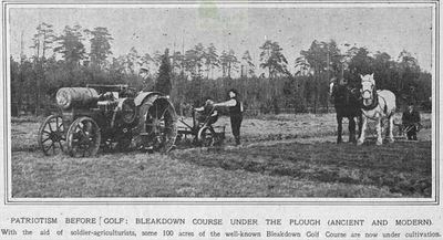 Bleakdown Golf Club, Byfleet, Surrey. The course was used for growing cops in WW1.